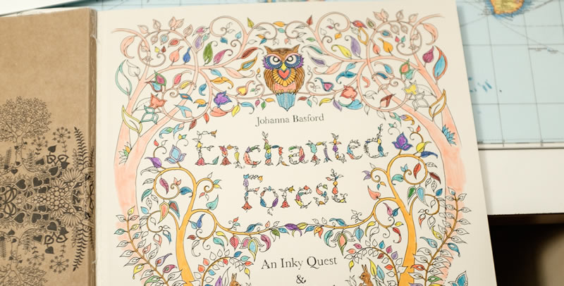 The Enchanted Forest Is Another Beautifully Illustrated Adult Colouring Book Images Are Of Forests And Animals Pictures Extremely Well Drawn